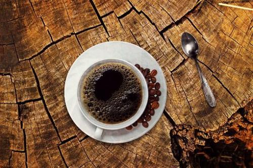 mengenal kopi luwak - apakah kopi luwak mahal