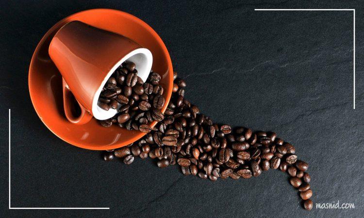 jenis jenis kopi