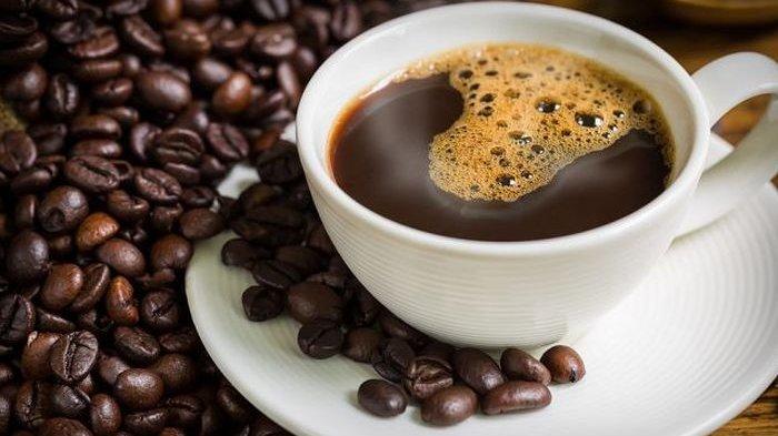 mengapa kopi luwak mahal